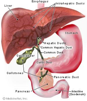 suplimente care dezintoxică ficatul